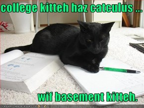 college kitteh haz catculus ...  wif basement kitteh.