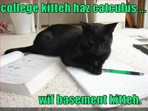college kitteh haz catculus ...  wif basement kitteh.