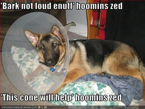 'Bark not loud enuff' hoomins zed  'This cone will help' hoomins zed