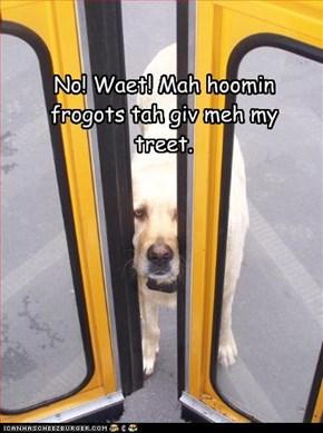 No! Waet! Mah hoomin frogots tah giv meh my treet.