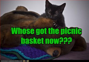 Whose got the picnic basket now???