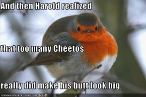 And then Harold realized that too many Cheetos really did make his butt look big.