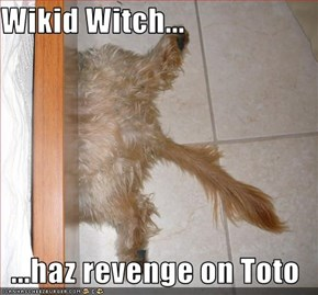 Wikid Witch...  ...haz revenge on Toto