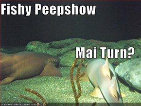 Fishy Peepshow Mai Turn?