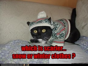 which is scarier...  snow or winter clothes ?