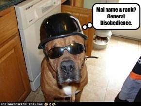 Mai name & rank? General Disobedience.