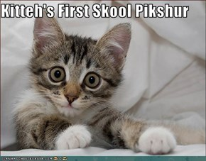 Kitteh's First Skool Pikshur