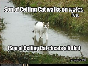 Son of Ceiling Cat walks on water.
