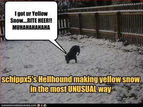 I got ur Yellow Snow....RITE HEER!! MUHAHAHAHAHA