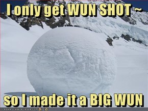 I only get WUN SHOT ~   so I made it a BIG WUN