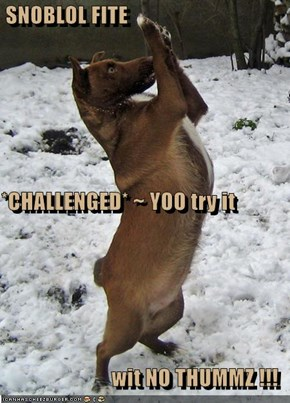 SNOBLOL FITE *CHALLENGED* ~ YOO try it  wit NO THUMMZ !!!