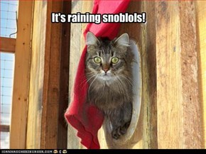 It's raining snoblols!