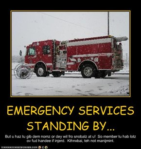 EMERGENCY SERVICES STANDING BY...