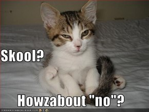 """Skool? Howzabout """"no""""?"""