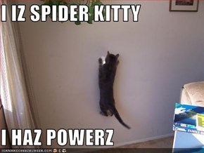 I IZ SPIDER KITTY  I HAZ POWERZ