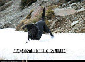 MAN'S BEST FRIEND..LENDS A HAND!