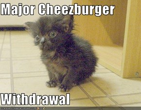 Major Cheezburger  Withdrawal