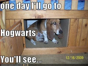 one day I'll go to Hogwarts You'll see...