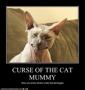 CURSE OF THE CAT MUMMY