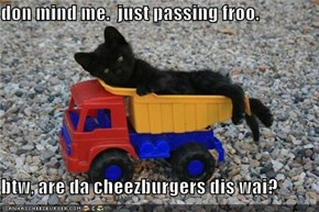 don mind me.  just passing froo.  btw, are da cheezburgers dis wai?