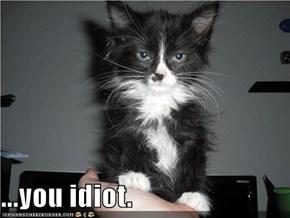 ...you idiot.