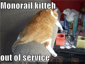 Monorail kitteh  out of service