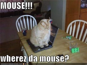 MOUSE!!!  wherez da mouse?