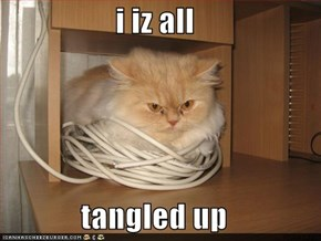 i iz all  tangled up