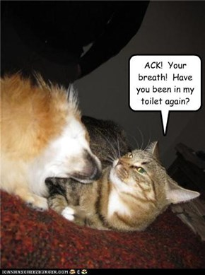 ACK!  Your breath!  Have you been in my toilet again?
