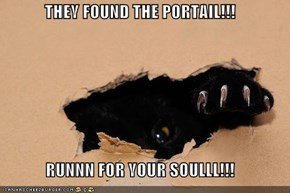 THEY FOUND THE PORTAIL!!!  RUNNN FOR YOUR SOULLL!!!