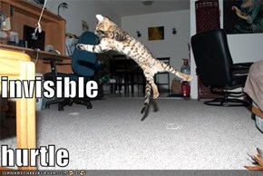 invisible hurtle
