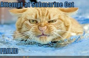 Attempt at Submarine Cat  FAILED