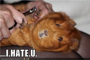 ...I.HATE.U.