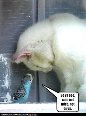 So ya see, cats eat mice, not birds.