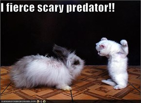 I fierce scary predator!!
