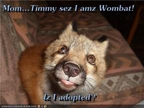 Mom...Timmy sez I amz Wombat!  Iz I adopted?