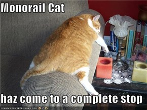 Monorail Cat  haz come to a complete stop