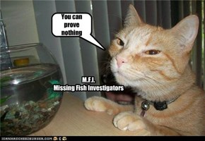 M.F.I. Missing Fish Investigators