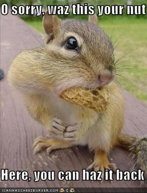 O sorry, waz this your nut  Here, you can haz it back