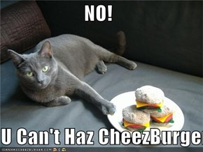 NO!  U Can't Haz CheezBurger!