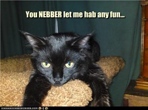 You NEBBER let me hab any fun...