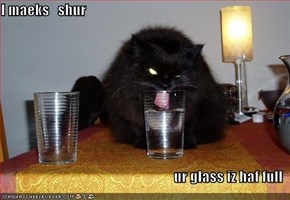 I maeks   shur  ur glass iz haf full