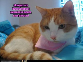 oktopurr are  bweast cancer awareness month.  save da tatas!
