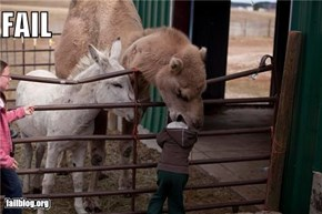 Petting Zoo FAIL