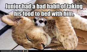 Junior had a bad habit of taking his food to bed with him.