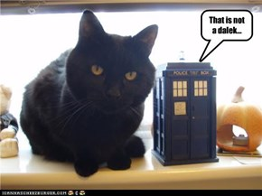 That is not a dalek...