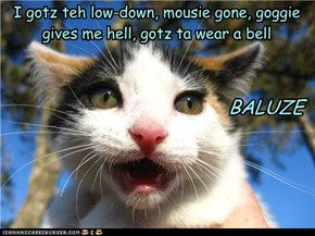 I gotz teh low-down, mousie gone, goggie gives me hell, gotz ta wear a bell