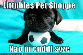 Littuhles Pet Shoppe  Nao in cuddl syze