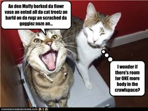 An den Muffy borked da flowr vase an eeted all da cat treetz an barfd on da rugz an scrached da goggiez noze an...