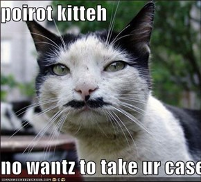 poirot kitteh  no wantz to take ur case